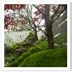 苔と庭石、紅葉で作成した和庭。眺めるだけで心が和みます。