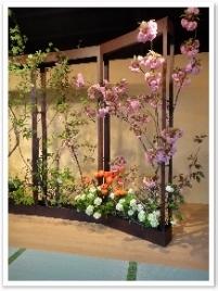 八重桜、オオデマリ、ラナンキュロス・・・春の花々です。