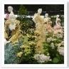 バラとドレスの競演。ビーズ刺繍を施したドレスと、バラのコラボレーション。