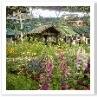 ポーターは湖畔の花園で暮らす夢を見ていたのでしょうか?