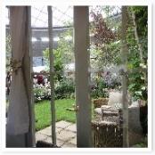 コテージからの風景。心地よい時間が過ごせるお庭ですね。
