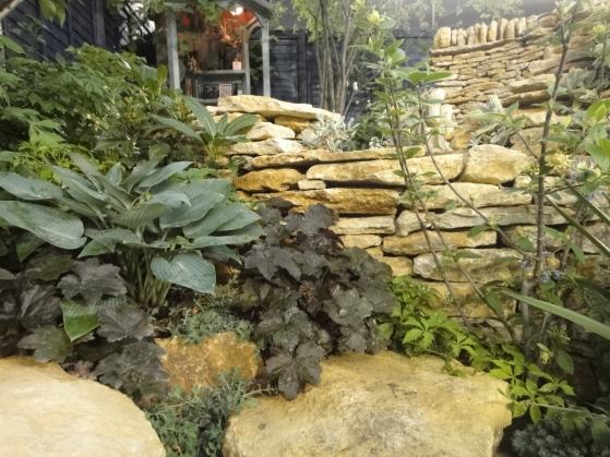 スモーキーカラーの植物たち。
