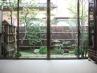 室内から愛でる和庭