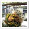 日本の素材を生かした秋らしいハンギング。