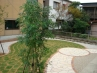 石貼りと芝生の洋風ガーデン工事 施工例1