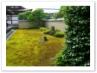方丈北庭の「龍吟庭」