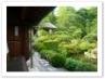 茶室「清漣亭(せいれんてい)」と蓮葉島