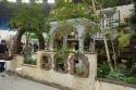 国際バラとガーデニングショウ Living Garden…そこは植物達のテーマパーク / /