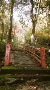 晩秋の湖北五山巡り その2 - 14 / / / / /
