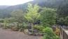 雑木を取り入れた和風庭園2
